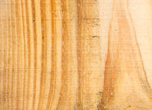 Wood background natural Stock Photography