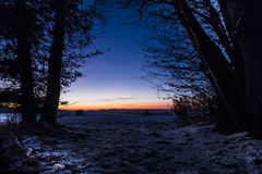 Wood at Night. Winter in the woods at night stock images