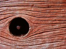 Wood node with nail Royalty Free Stock Photos