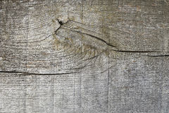 Wood and node texture background Royalty Free Stock Photo