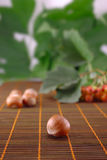 Wood nut. On a wooden napkin with fruit Royalty Free Stock Images