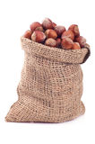 Wood nut in a bag Stock Image