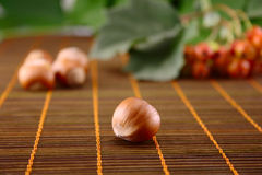 Wood nut on bamboo napkin. Wood nut on a wooden napkin with fruit Stock Image