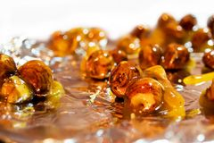 Wood nut in a sugar syruр. Royalty Free Stock Images