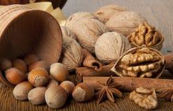 Wood nut, walnut. Anise, cinnamon against a dark background Royalty Free Stock Photo