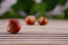 Wood nut on a wooden napkin. Wood nuts removed on a wooden napkin Royalty Free Stock Image