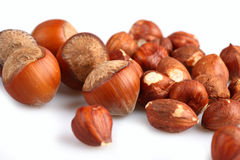Wood nuts Royalty Free Stock Image