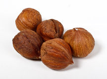 Wood nuts Royalty Free Stock Photo