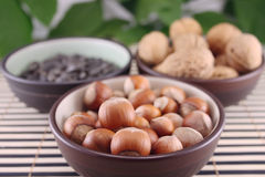 Wood nuts in cup on bamboo napkin. Wood nuts in a cup on a bamboo napkin against walnuts and sunflower seeds removed close up Stock Images
