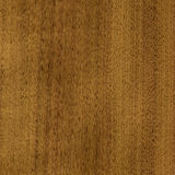 Wood, nutwood. Wood, veneer nutwood tree, natural finishing material Stock Photography