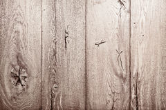 Wood oak texture Royalty Free Stock Photo