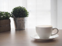 Wood office table with cup of latte coffee and beautiful flower. On blurry white curtain texture background, view from front wood table Stock Photos