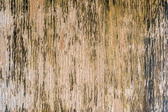 Wood old vertical background Stock Photo