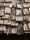 Wood ordnat överst av bungalowhuset Arkivfoton