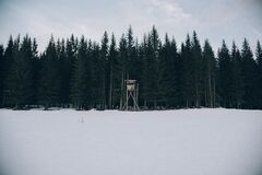 Wood Outpost on Edge of Icy Forest Stock Photography