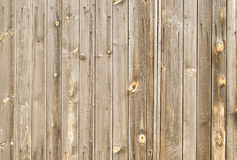 Free Wood Panel Background Royalty Free Stock Images - 5889729