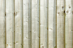 Wood panel background. Unpainted wood panel fence background Royalty Free Stock Photo