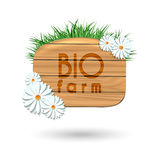 Wood panel banner with camomile flowers Stock Image
