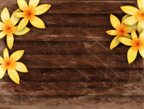 Wood Panel Floral Border Stock Photography