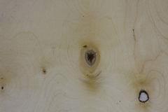 Wood panel med fnurenbakgrund Royaltyfria Foton