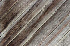 Wood panel som bakgrund eller textur royaltyfri fotografi