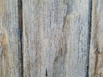 Wood panel with vertical lines, centered panel, weathered natural discoloration stock photography