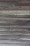 Wood panelbakgrund Royaltyfri Bild