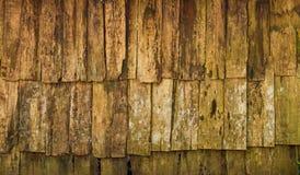 Wood paneler för Grunge för bakgrund Fotografering för Bildbyråer