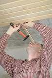 Wood panelling the ceiling. Contractor installing wood panels on a ceiling Royalty Free Stock Images