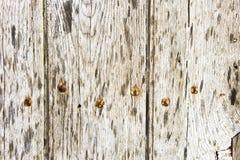 Wood panels Stock Image