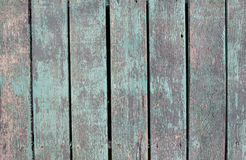 Wood panels, Old wood backgrounds Stock Images