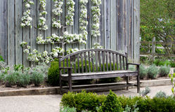 Wood park bench by flowering pearn Stock Photos