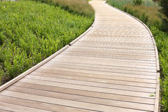 Wood path Royalty Free Stock Photography