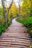 Wood path in the Plitvice lake national park Royalty Free Stock Image