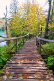Wood path in the Plitvice lake national park Royalty Free Stock Photos