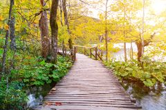 Wood path in the Plitvice lake national park Stock Photo
