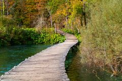 Wood path in the Plitvice lake national park Stock Images