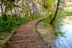 Wood path in the Plitvice national park in autumn Royalty Free Stock Image