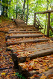 Wood path in the Plitvice national park in autumn Stock Photos