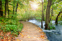 Wood path in the Plitvice national park in autumn Royalty Free Stock Photos