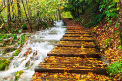 Wood path in the Plitvice national park in autumn Stock Images