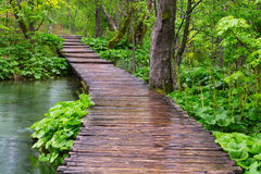 Wood path in the Plitvice national park Stock Photo