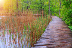Wood path in the Plitvice national park Stock Photos