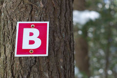 Wood path sign letter b forest graphic typography. Letter b type on tree trunk bark wood path sign stock photos