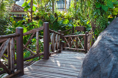 Wood path through tropical forest Royalty Free Stock Photo