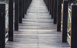 Wood path way among the Mangrove forest stock images