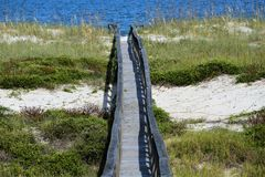 The wood pathway is built above a sandy beach dune in North Florida. The dunes of the sandy beach protect the entire area from water and wind damage royalty free stock photos