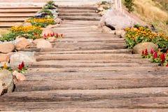 Wood pathway in the garden Stock Photos