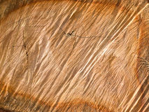 Wood Pattern Stock Image