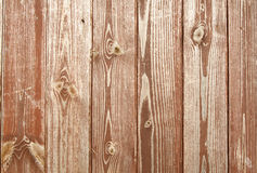 Wood pattern. Close up of the pattern on a wooden door Royalty Free Stock Images